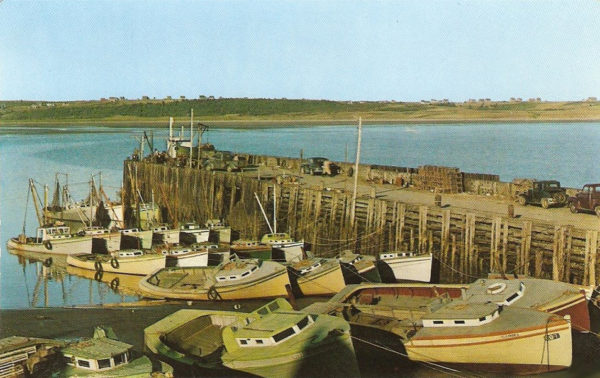 Vintage postcard of Cape Saint Mary, circa 1950s