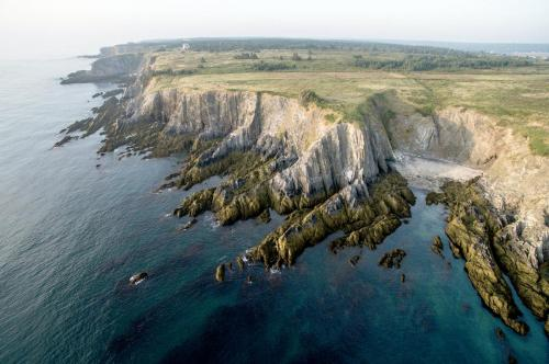 Cape Cliffs / Les falaises du cap